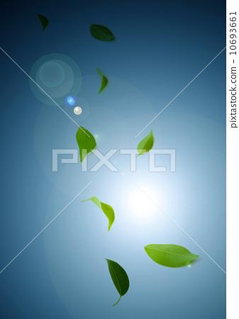 Leaf 10693661