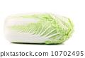 fresh cabbage salad 10702495