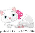 Cute white cat 10756004