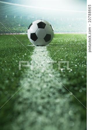 flood lights, grass, sport