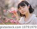 벚꽃을 감상 젊은 여성 10791970