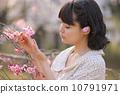 벚꽃을 감상 젊은 여성 10791971