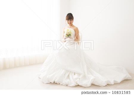 Bridal bride 10831585