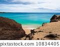 emerald green, the sea, sea 10834405