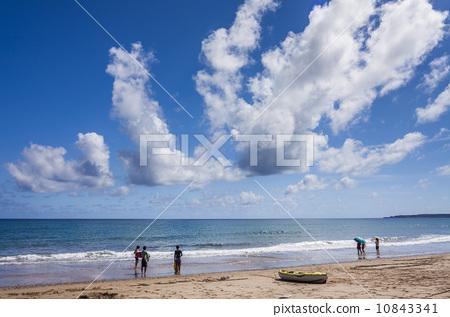 盛夏的海邊 10843341