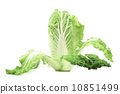cabbage vegetable salad 10851499