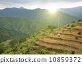 mountain, terrace, environment 10859372