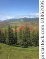 Pine Mountain 10862095
