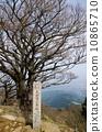 Oyama summit 10865710
