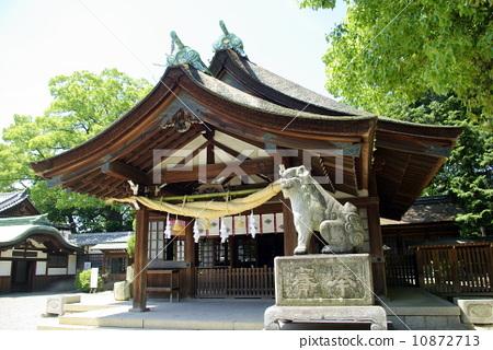 The shrine of Chiryu Shrine 10872713