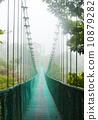 在雨林的吊橋 10879282