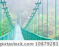 在雨林的吊橋 10879283