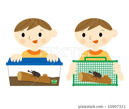昆蟲繁殖 10907321