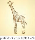 Sketch giraffek, vector vintage background 10914524