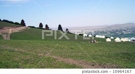 内蒙锡林郭勒盟草原 10964167
