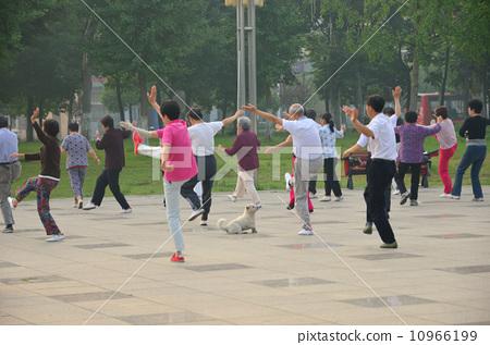 중국의 공원 10966199