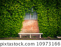 Stone bench and ivy background 10973166
