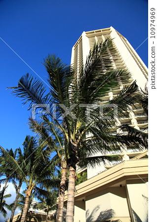 Building of Hawaii 10974969