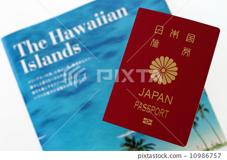 Passport and Hawaii travel brochure 10986757