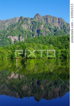新鮮的綠色鏡像的池塘 10992013