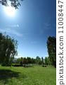 Green grass on a golf field 11008447