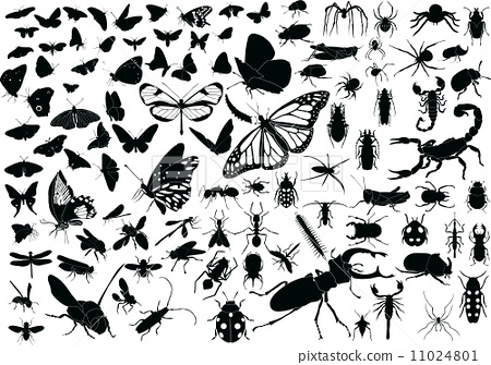 100 Insects 11024801