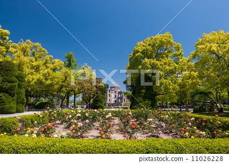 Hiroshima Peace Memorial Park Rose Garden 11026228