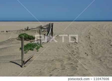 Summer sandy beach 11047606