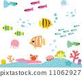 coral, vector, vectors 11062927