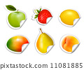 berry, apricot, apple 11081885