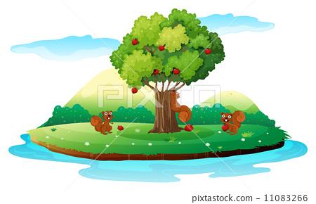 An island with three playful beavers 11083266