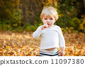 Little toddler boy in autumn park 11097380