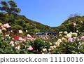 鎌倉文學館和玫瑰 11110016