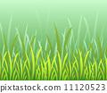 背景 青草 草地 11120523