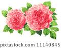 장미, 장미꽃, 로즈 11140845