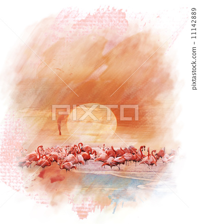 Watercolor Image Of  Flamingos 11142889
