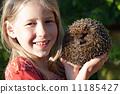 树篱 篱笆 女孩 11185427