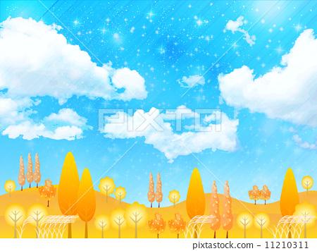 Maple leaves scenery 11210311