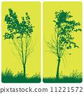 Tree 11221572