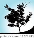 Tree 11221583