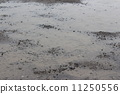 大雨 11250556