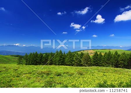 Summer Plateau 11258741