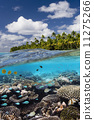 ปะการัง,เขตร้อน,หมู่เกาะคุก 11275266