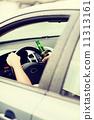 alcohol, man, car 11313161