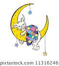 星星 天空 月亮 11316246