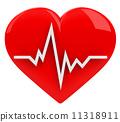 จังหวะการเต้นของหัวใจ,ชีพจร,หัวใจ 11318911