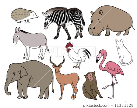 vector, vectors, animal 11331329