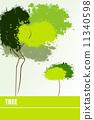 나무 11340598