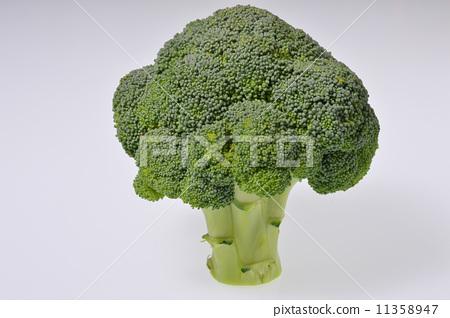 broccoli 11358947