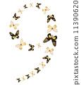 나비, 번호, 숫자 11390620